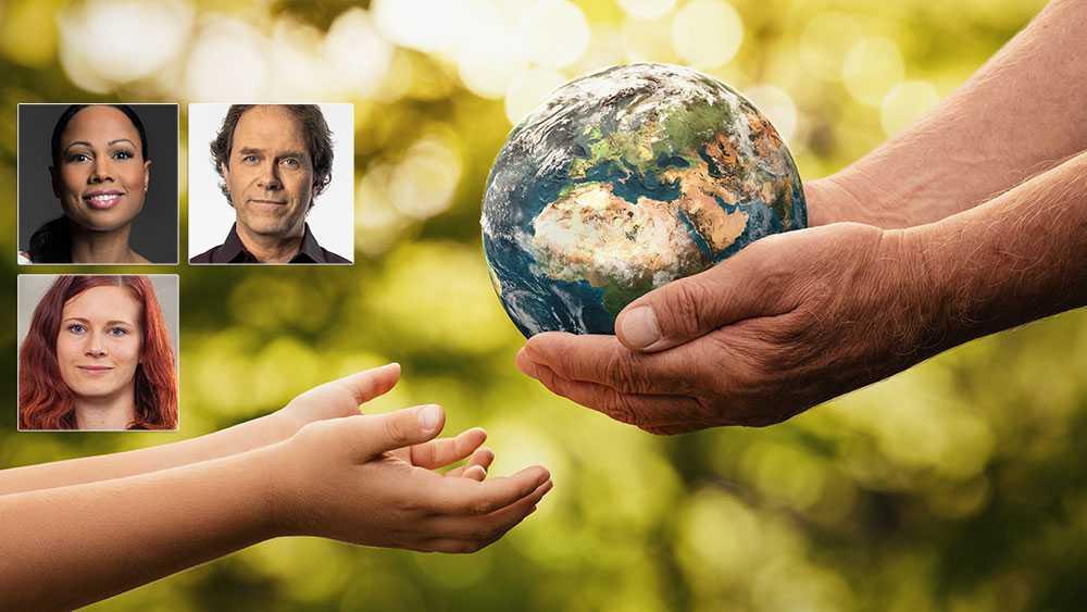 Debatt: Förstörda ekosystem får inte vara affärsidé